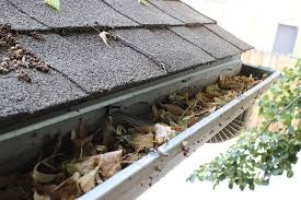 Why is it Important to Keep Your Gutters Clean?