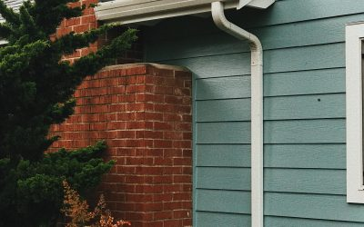 5 Reasons Why Surrey Gutter Cleaning Services are Essential